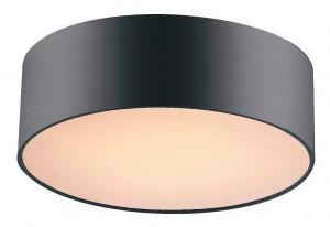 Освещение Светильник потолочный Cerchi 1514-2C от FAVOURITE