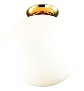 Освещение Светильник потолочный Zirkel 1531-1C2 от FAVOURITE